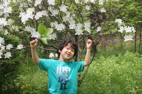 20130514_나무 (110).jpg